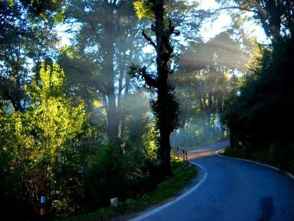 Way to Kanatal