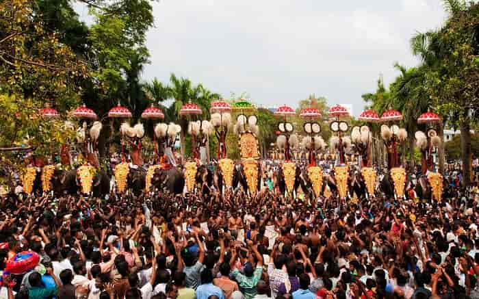 elephant-festival-in-kerala
