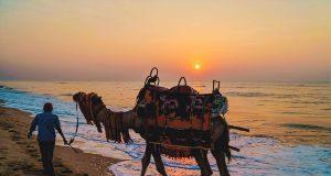 puri-beaches-trip