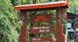 Rajaji National Park Entrance Gate